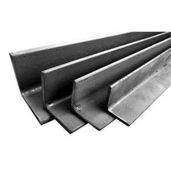 Galvanized Perforated BS En S355jr S355j0 ASTM A572 Gr50 Gr60 A36 Slotted Angle Iron #1 image